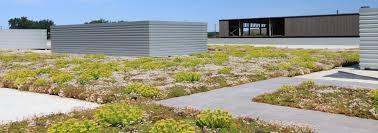 liveroof hybrid green roofs