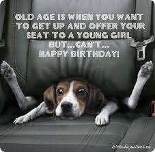 top 50 funny bday wishes and humorous birthday cards