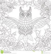 beautiful owl coloring page stock vector image 61347352