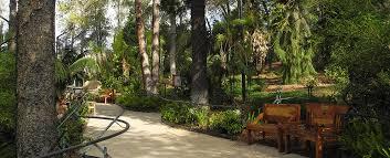 tiger trail san diego zoo safari park