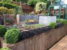 Scottish Rock Garden Forum by Phlomis Russelliana Ophiopogon Geranium Himalayense Gardening