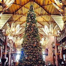 jambo everyone holidays at the animal kingdom lodge