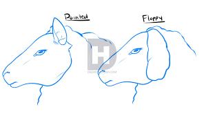 how to draw a sheep step by step by darkonator drawinghub