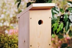 How To Build A Toy Chest From Scratch by One Board Diy Birdhouse Backyard Projects Birds U0026 Blooms