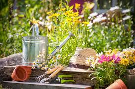 Interior Garden Services How Gardening Services Can Help To Keep The Garden Arranged Make
