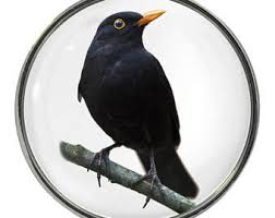 blackbird ornament etsy