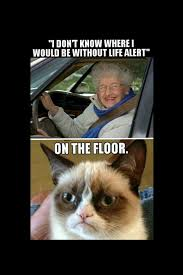 Life Alert Meme - club giggle brings you 20 funny pictures for the day of 7 25 17
