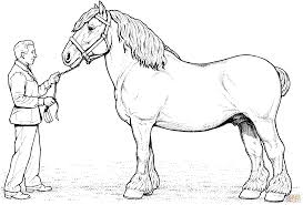 free horse color pages activity shelter