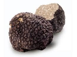 comment cuisiner les truffes noires truffe légumes