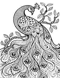 godzilla 2014 drawing by godzilla 2014 drawings inside godzilla