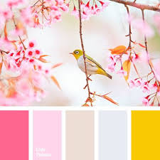 Sping Colors 90 Best Color Palette Images On Pinterest Color Palettes Colors