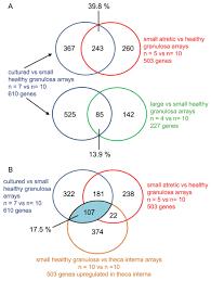 transcriptomal profiling of bovine ovarian granulosa and theca