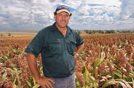 tr ied bureau tried and true with mr buster sorghum namoi valley independent