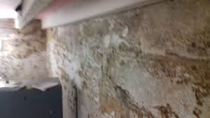 mould survey and damp investigation in keighley town centre