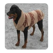 221 best knit for pets images on sweater pattern