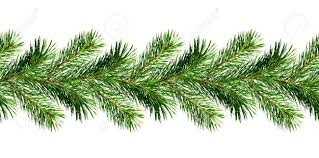pine tree twigs garland for decoration isolated on stock