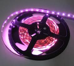 pink led flex led 12 volt dc pink 5 meter