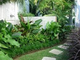 Tropical Gardening Ideas Tropical Garden Bed Ideas