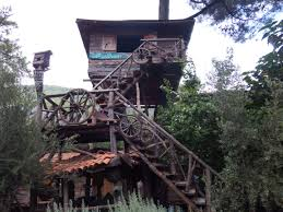 staying in a tree house in olympos from melbourne she flies