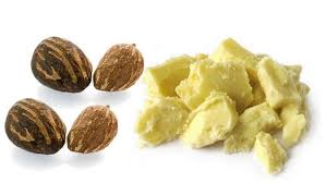 shea butter for skin cancer typhoid fever u2014 features u2014 the