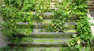 valuable vertical vegetable garden design 20 vertical vegetable