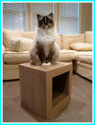 Cool Cat Furniture Cool Cat Scratching Tools To Train Your Cat Managedmoms Com