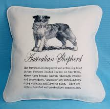 australian shepherd ugly stage australian shepherd pillow vintage art and description shabby chic