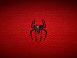 download spiderman wallpaper verdewall