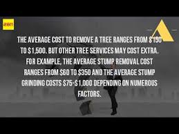 how much does it cost to take a tree