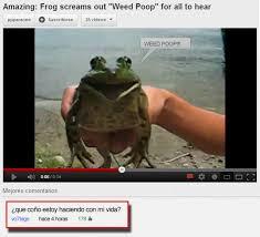 imagenes chistosas youtube comentarios graciosos de youtube imágenes taringa