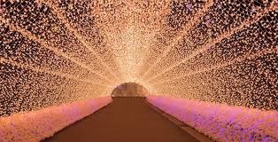 holiday light displays near me 12 places to see spectacular holiday light displays near toronto