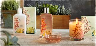 thymes candles agave nectar thymes perfume a fragrance for women 2010