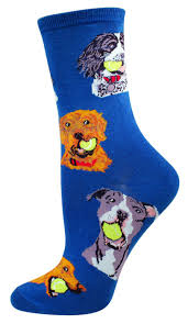 Spanish For Socks 8 Best Dinosaur Socks Images On Pinterest Dinosaur Socks