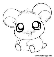 Coloriage Hamster Cute Mignon Animaux dessin