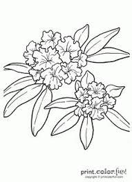 20 rhododendron tattoo designs
