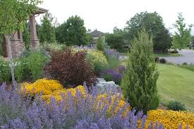 Flowers In Longmont Co - colorado zeriscape for front yard colorado landscaping