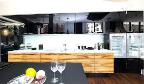 Kitchen Cabinets Brands High End Kitchen Cabinets U2013 Fitbooster Me