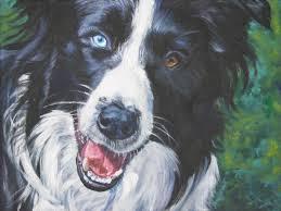 belgian shepherd or border collie border collie dog art canvas print of la shepard painting