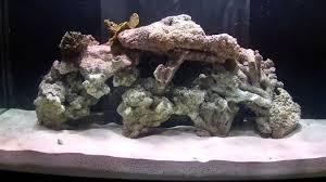 Aquascape Designs Inc How To Aquascape A Reef Aquarium Youtube