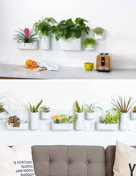 indoor garden ideas indoor garden idea hang your plants from the ceiling u0026 walls