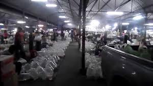 ornamental fish wholesale market in bangkok thailand 2014