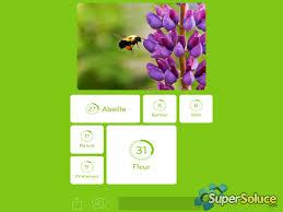 outil de cuisine outil de cuisine d un cheval et photo d une abeille