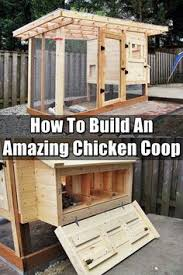 How To Build A Rabbit Hutch Out Of Pallets This Month U0027s U201ccool Coop U201d Is A Great Example Of A Doable Diy