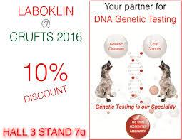 australian shepherd crufts 2016 laboklin news and offers laboratory for dna genetic testing