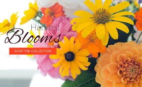 hampton falls florist flower delivery by flowers by marianne