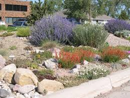 grow wyo choosing the right plants for wyoming gardents home