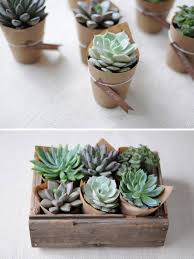party favor or hostess gift idea wrap small plant pots with kraft