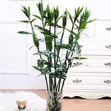 plante verte dans une chambre 1 pc 130 cm pastorale artificielle soie fleurs chanceux