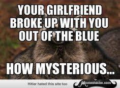 Evil Raccoon Meme - evil plotting raccoon evil plotting raccoon pinterest