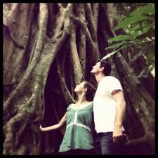rainforest animals adventures port douglas tours u0026 activities